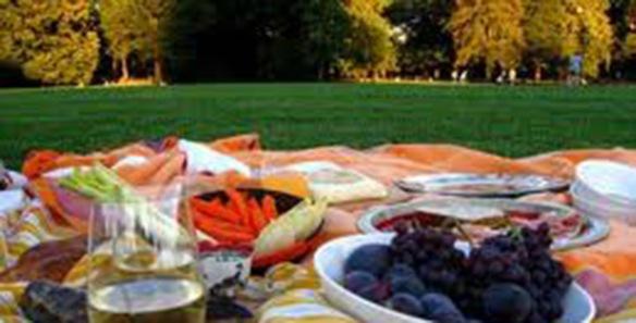 community picnic2
